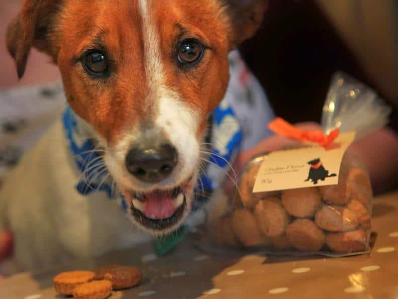 Welly - Wellybix Dog Biscuits