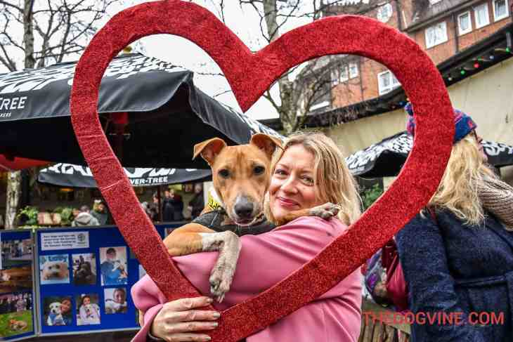 All Dogs Matter Valentines Walk-15