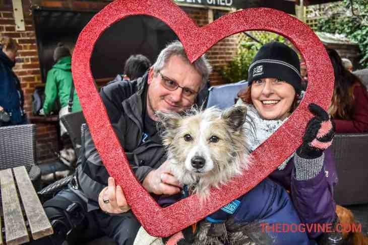 All Dogs Matter Valentines Walk-17