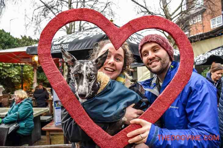 All Dogs Matter Valentines Walk-38