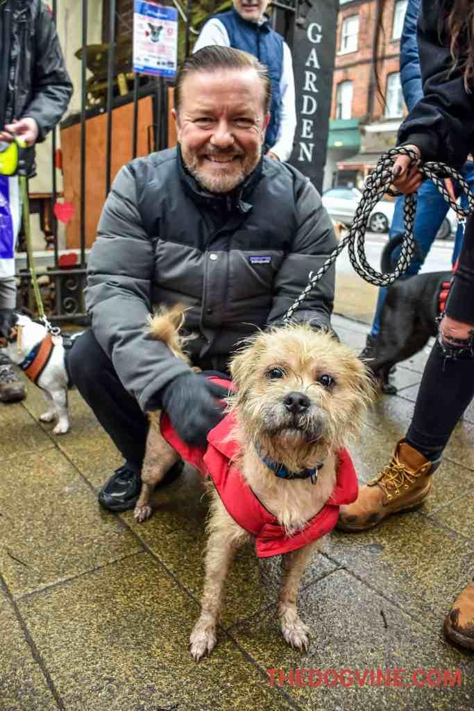 All Dogs Matter Valentines Walk 4