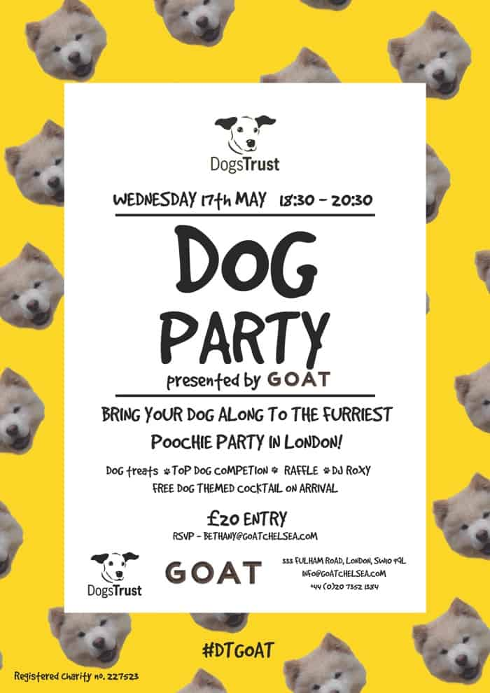 Goat_Dogs_Trust_Dog_Party_2017