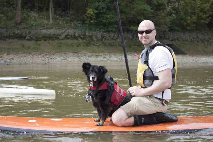 Dog and Human Paddle Boarding 00017