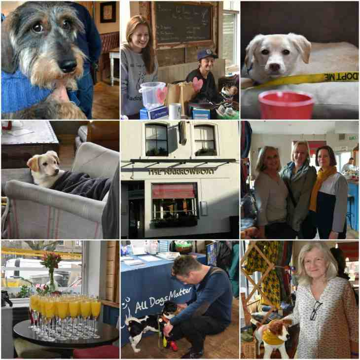Doggy Brunch Collage - The Narrow Boat - October 2017 Events Agenda For London Dogs