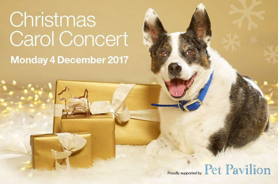 December 2017 Events Agenda For London Dogs - Battersea Christmas Carol Concert 2017