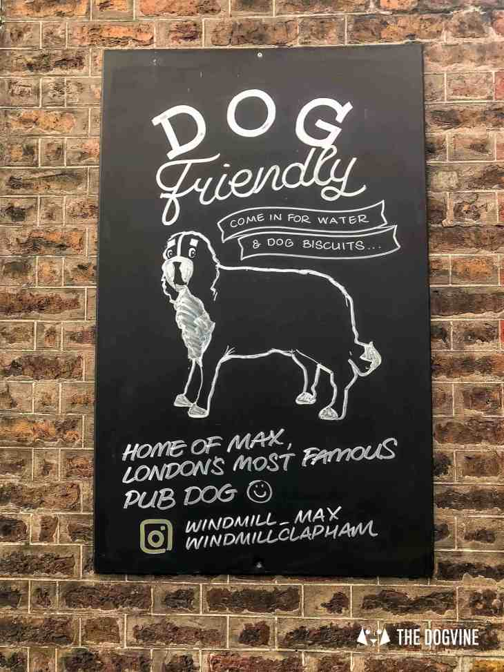 Canine Christmas Crackers at The Windmill Clapham 41