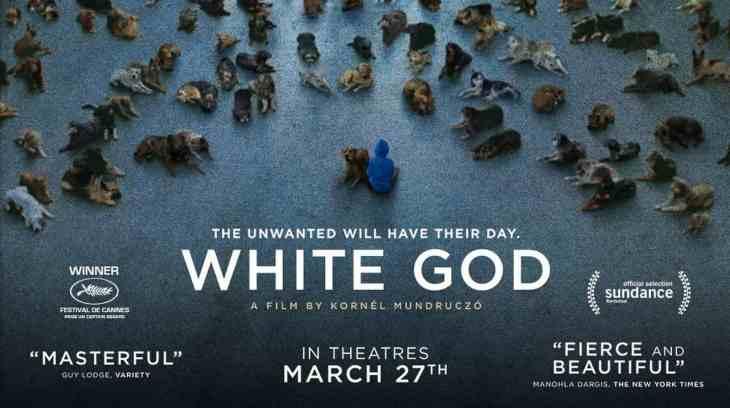 Dog Friendly Cinema - White God