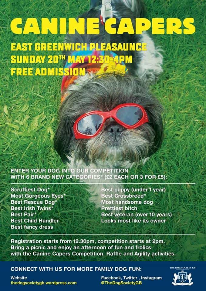 London Dog Shows | Canine Capers East Greenwich Pleasaunce