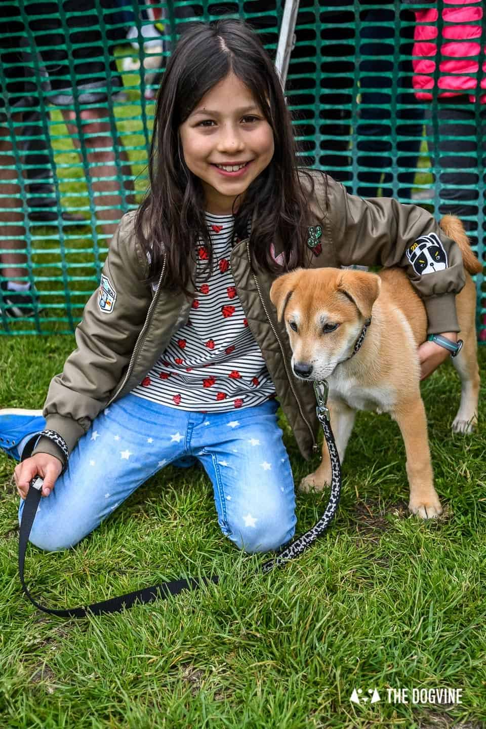 London Dogs At The Great Hampstead Bark Off 2018 11