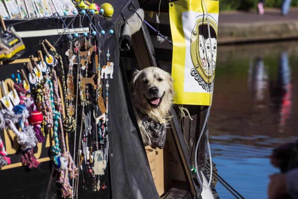 Your London Dog Events Round-up | 26-28 May - The Doggie Boat 1