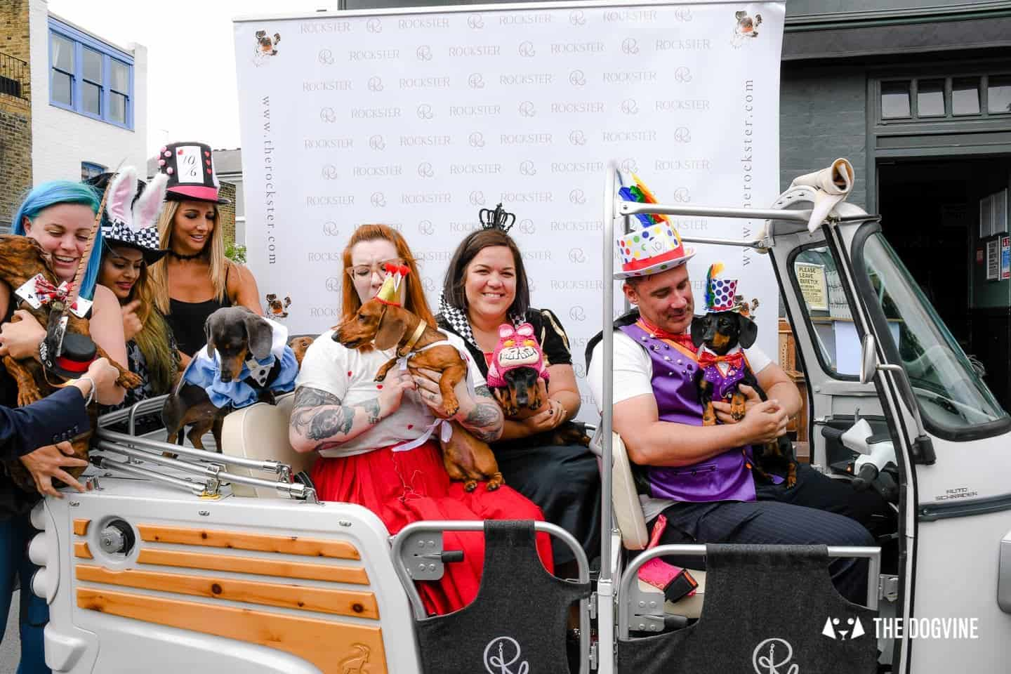 London's Best Dressed Dachshunds At Sausage Social London The Mad Hatters Tea Party 74