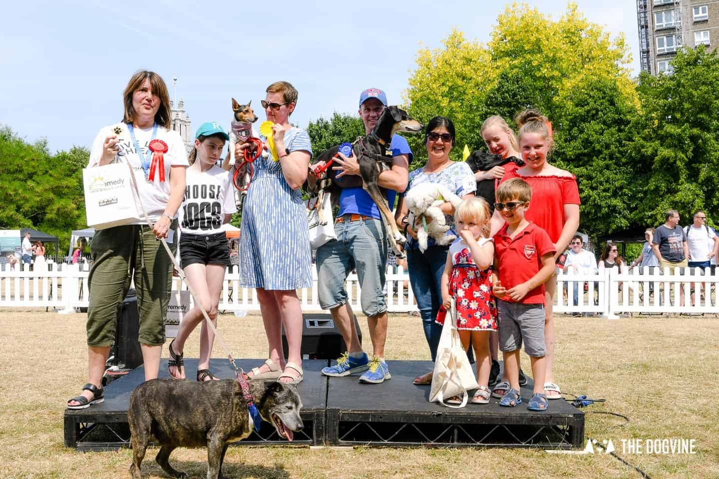 All Things Dog At The Canary Woof Dog Show 2018 20