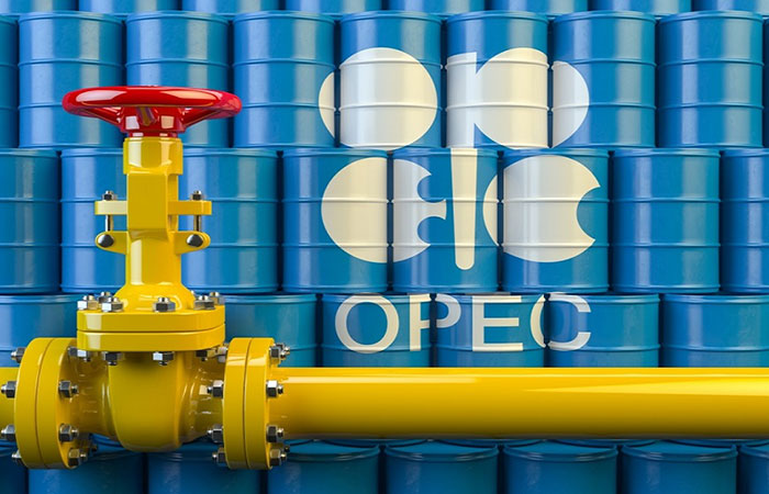 OPEC raises forecast for growth in world oil demand