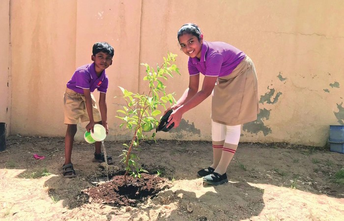 Pearl School West Bay campus marks World Environment Day