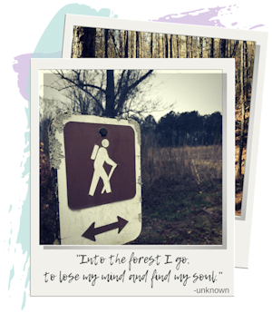 """Hiking Trails in Georgia - """"Into the forest I go, to lose my mind and find my soul."""" -unknown quote"""