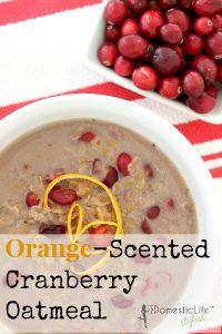 Orange Cranberry Oatmeal