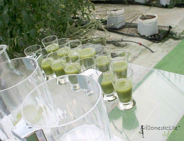 cucumber veggie juice