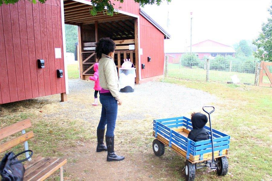 fall blue wagon