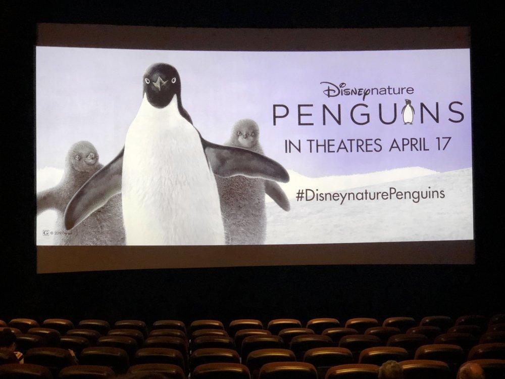 Disneynature Penguins Movie