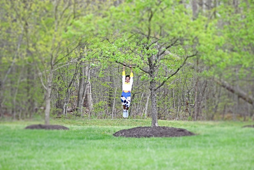 child hanging on a tree in Jessie costume
