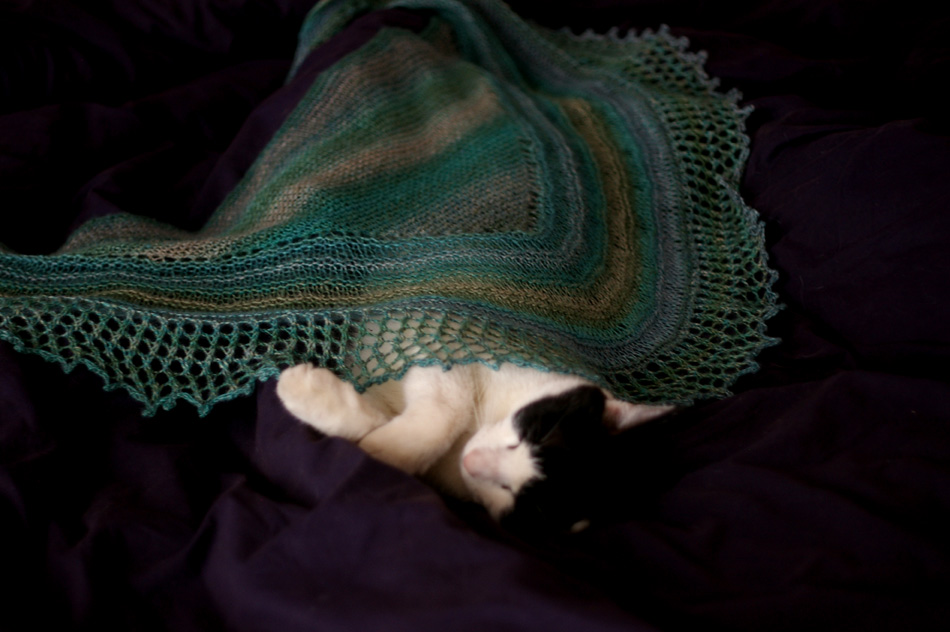Joey graciously modeling the Simmer Dim shawl...