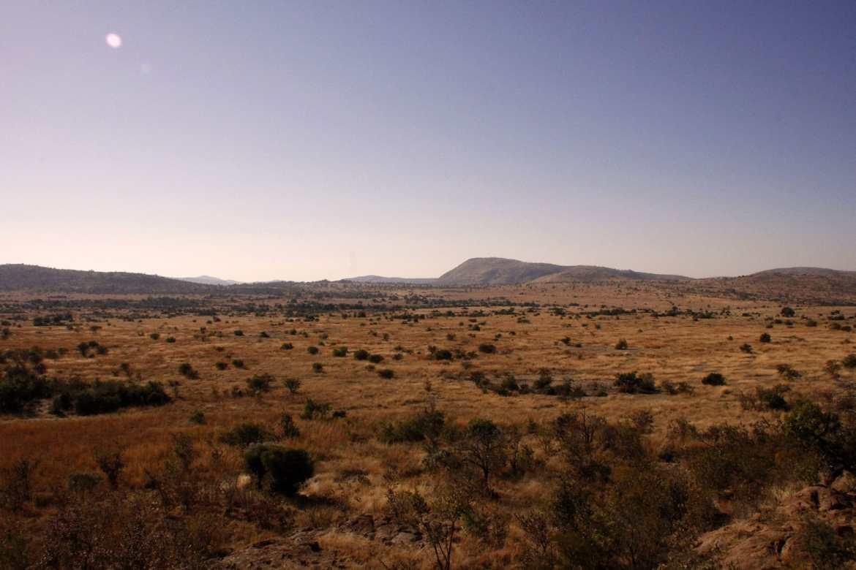 Landschaft in Pilanesberg