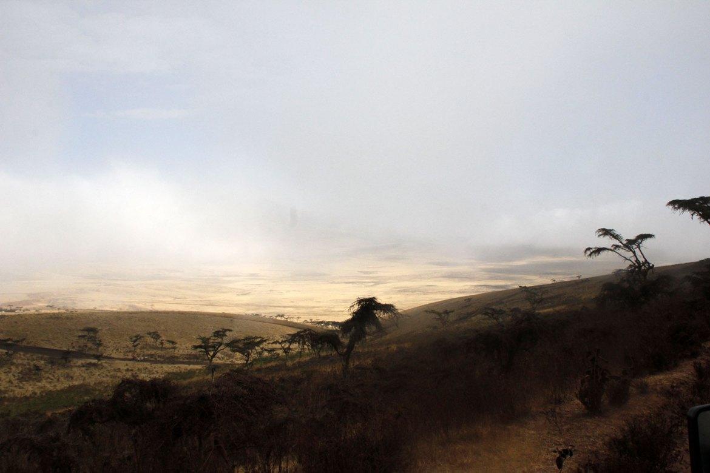 Nebel und Sonnenlicht im Ngorongoro Krater in Tansania