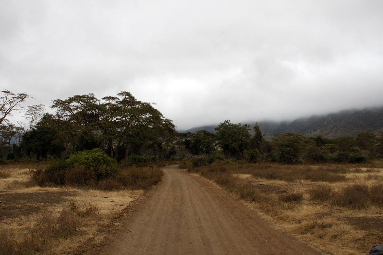 Straße im Ngorongoro Krater