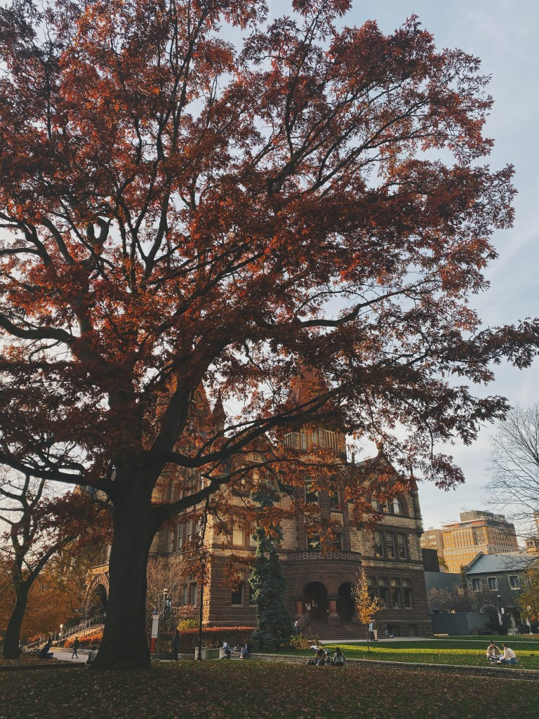 university of toronto automne