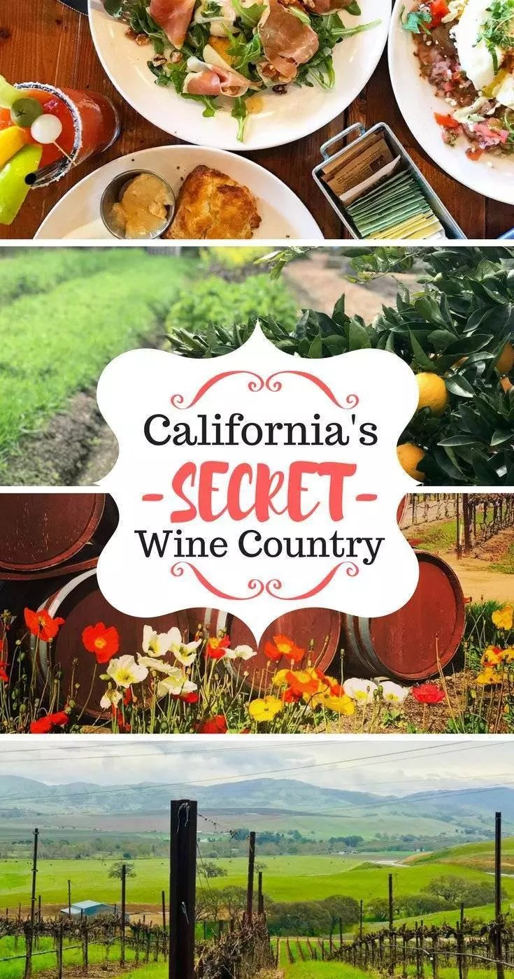 What to do in Livermore Valley: California's secret wine growing region. Skip Napa and Sonoma and discover this untapped gem for wine lovers and vino travelers. #livermore #ca #cali #winecountry