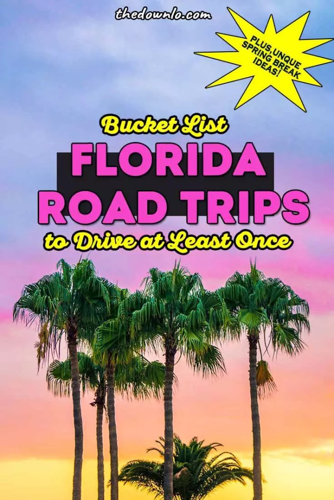 The Ultimate Florida Road Trip Ideas for spring break with kids or solo. Roadtrips across the Sunshine State, best destinations and places to visit for sun, beaches, adventure, nature, and outdoors. Roadtrip bucket list fun for couples, photography, and travel guides for beaches and vacation pictures to inspire your trip to Miami, Destin, the Florida Keys, Orlando, Tampa, Sarasota, Jacksonville and Daytona. #fl #florida #destintions #roadtrips