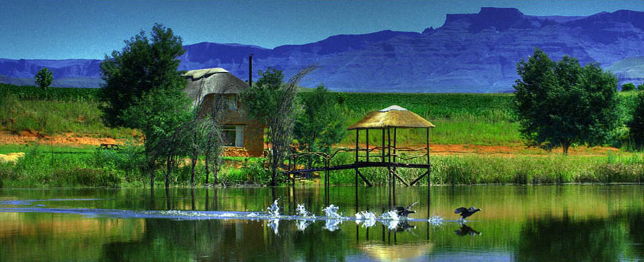 Shiriba Lodge, Honeystone Cottage (Source: Shiriba Lodge)