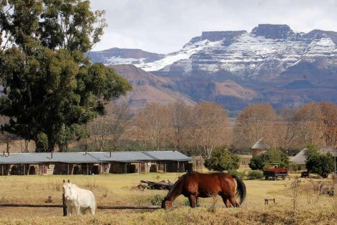 Ardmore Guest Farm, Central Drakensberg