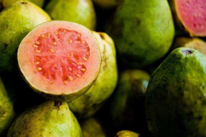 healthy fruits guava