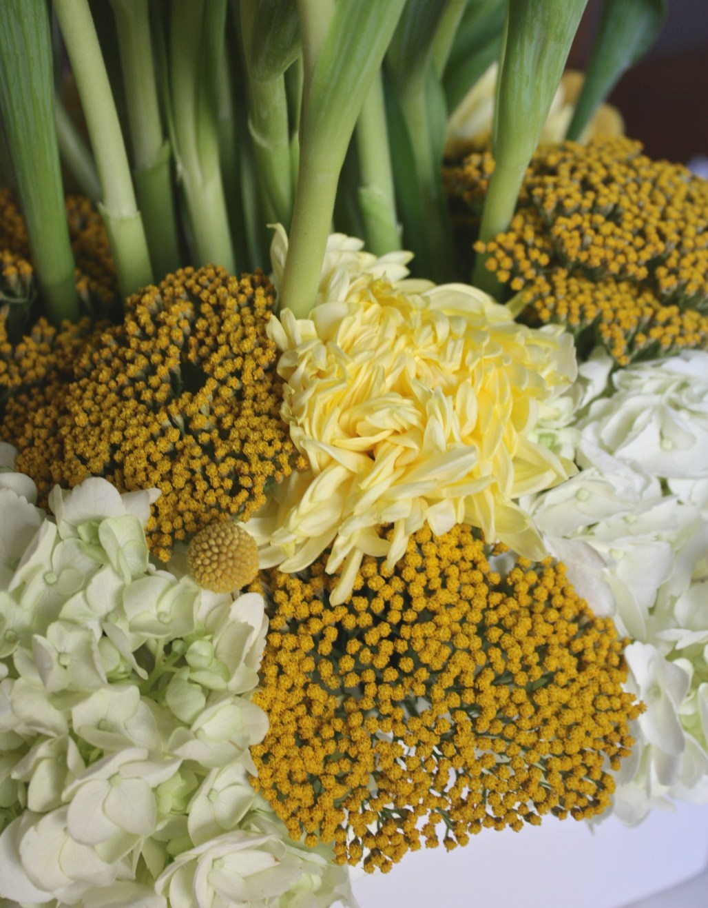 Floral Inspiration : Whimsical Yellows