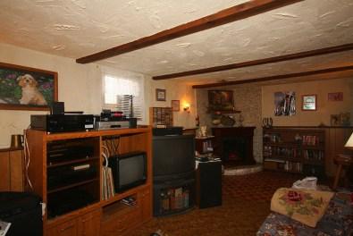 Basement den / family room
