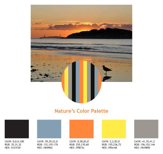 natures_color_palettes