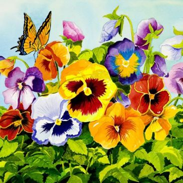 The meaning of a pansy flower in a dream
