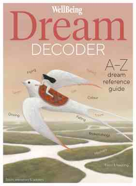 The Wellbeing Dream Decoder by Amy Campion Book Cover