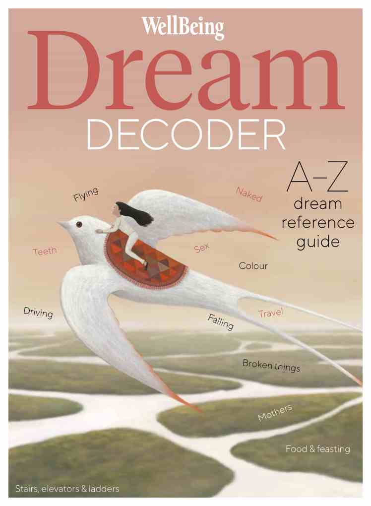 The Dream Decoder by Amy Campion Book Cover