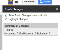 Track Changes Revision History Box