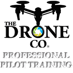 Professional Drone Pilot Training