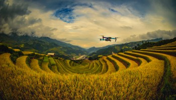 Sentera's NDVI sensor turns a basic DJI drone into a