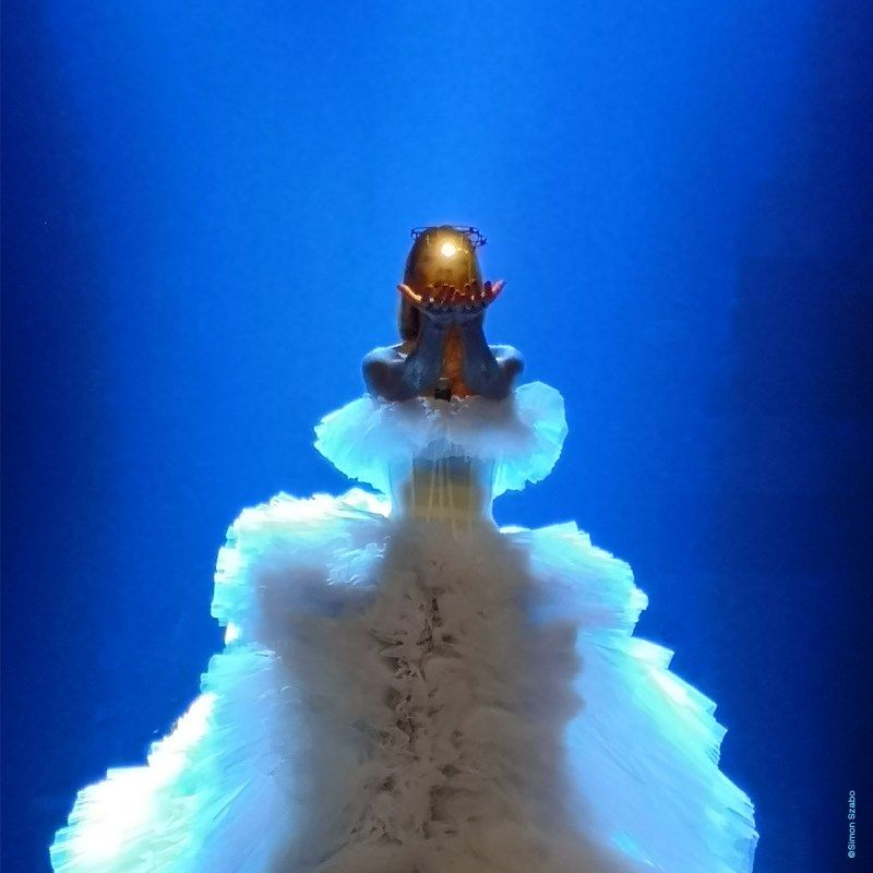 Celine Dion My Heart Will Go On encore drone show Verity