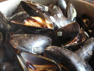 Free mussels!