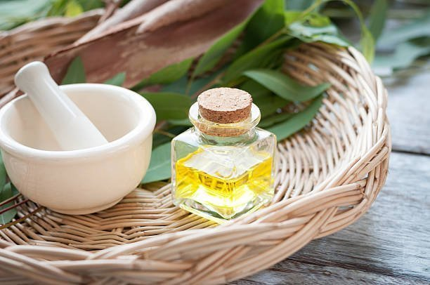 eucalyptus oil by droplet care