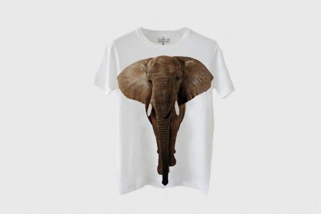 Ryan McGinley and EDUN help to save the African Elephant