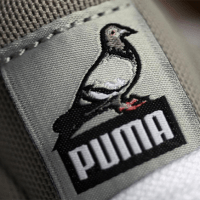 "STAPLE x PUMA - A ""PIGEON"" RELEASES COMING"