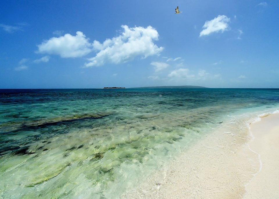 Little Half Moon Cay -Part of Portland Bight Protected Area. Photo by Ted Lee Eubanks