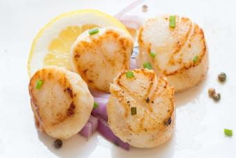 Grilled_Scallops